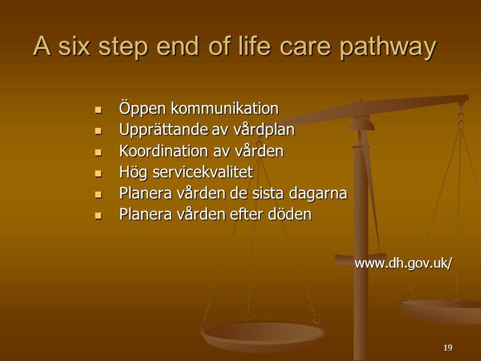 19 A six step end of life care pathway  Öppen kommunikation  Upprättande av vårdplan  Koordination av vården  Hög servicekvalitet  Planera vården