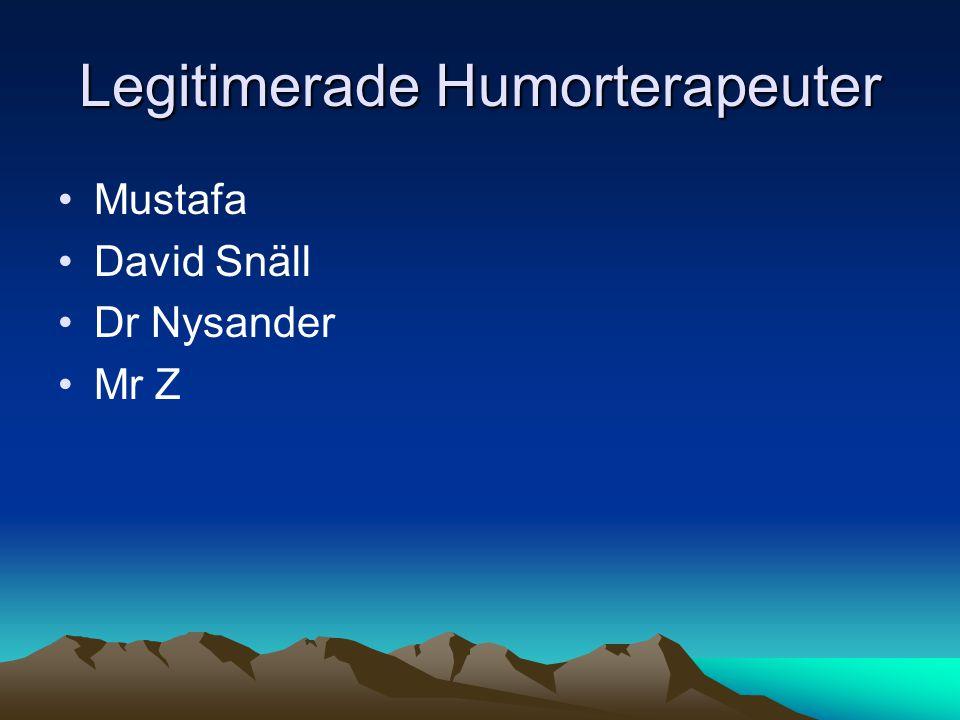 Legitimerade Humorterapeuter •Mustafa •David Snäll •Dr Nysander •Mr Z