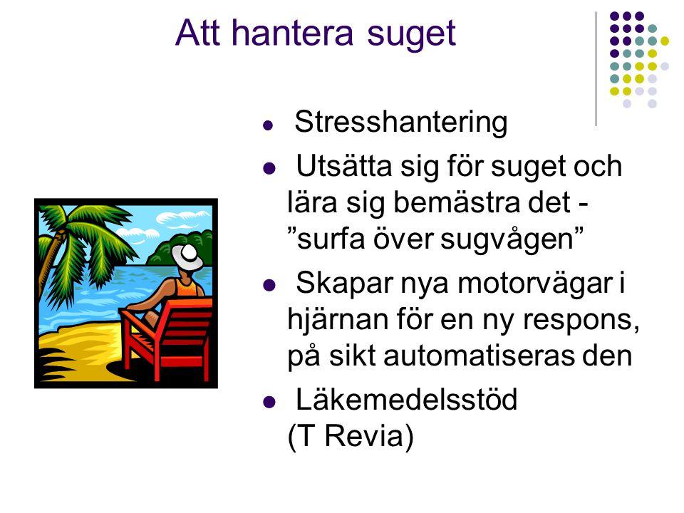 """Att hantera suget  Stresshantering  Utsätta sig för suget och lära sig bemästra det - """"surfa över sugvågen""""  Skapar nya motorvägar i hjärnan för en"""