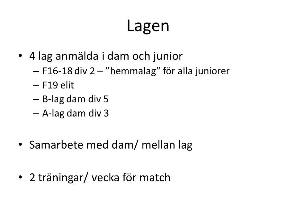 """Lagen • 4 lag anmälda i dam och junior – F16-18 div 2 – """"hemmalag"""" för alla juniorer – F19 elit – B-lag dam div 5 – A-lag dam div 3 • Samarbete med da"""