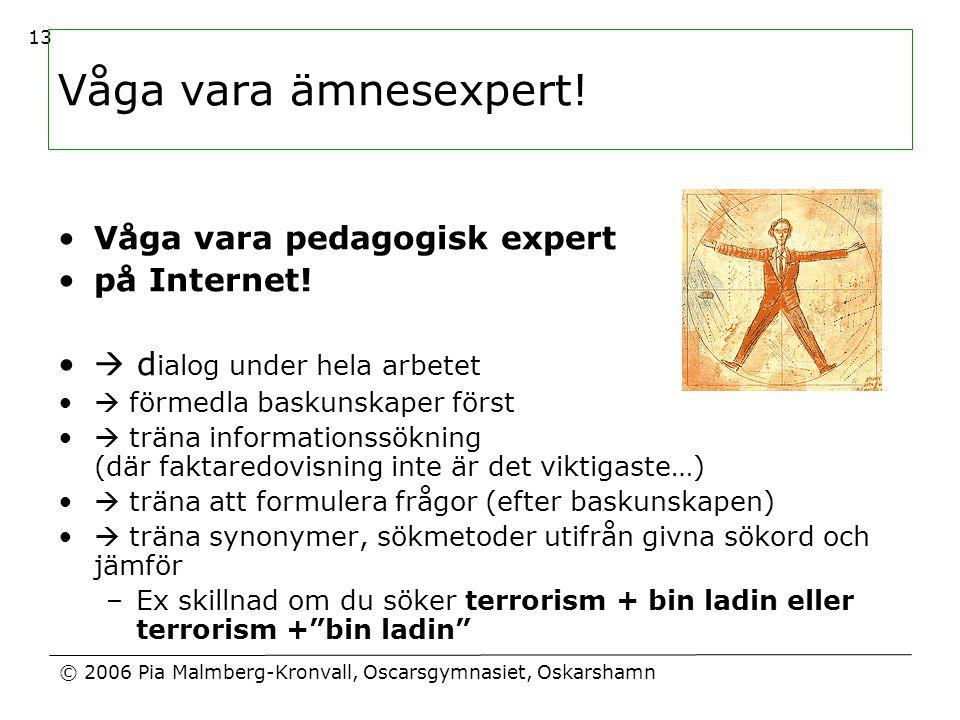 © 2006 Pia Malmberg-Kronvall, Oscarsgymnasiet, Oskarshamn 13 Våga vara ämnesexpert! •Våga vara pedagogisk expert •på Internet! •  d ialog under hela