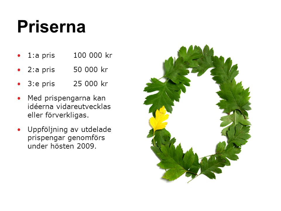 Priserna •1:a pris 100 000 kr •2:a pris 50 000 kr •3:e pris 25 000 kr •Med prispengarna kan idéerna vidareutvecklas eller förverkligas.