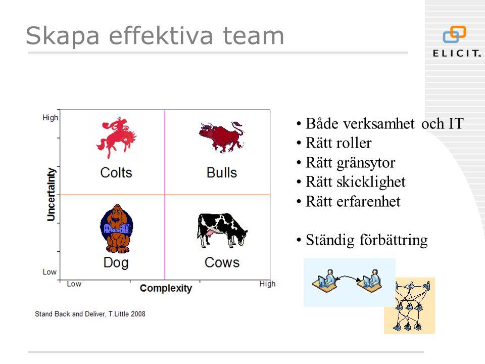 Skapa effektiva team • Både verksamhet och IT • Rätt roller • Rätt gränsytor • Rätt skicklighet • Rätt erfarenhet • Ständig förbättring