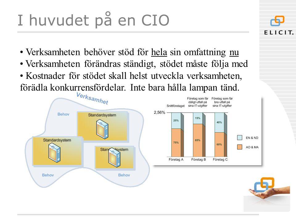 I huvudet på en CIO • Verksamheten behöver stöd för hela sin omfattning nu • Verksamheten förändras ständigt, stödet måste följa med • Kostnader för s