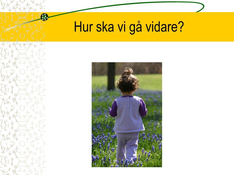 IUP, mål och blogg på webben Lärare Elev Föräldrar SYV Skolledare Elevhälsoteam