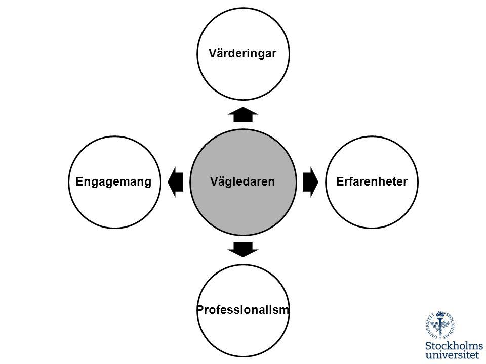 Vägledaren Värderingar Erfarenheter Professionalism Engagemang