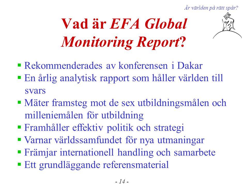 Vad är EFA Global Monitoring Report. Är världen på rätt spår.