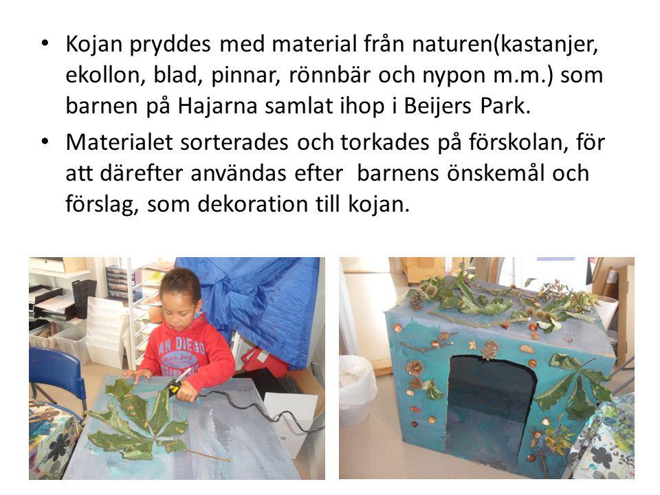 • Kojan pryddes med material från naturen(kastanjer, ekollon, blad, pinnar, rönnbär och nypon m.m.) som barnen på Hajarna samlat ihop i Beijers Park.
