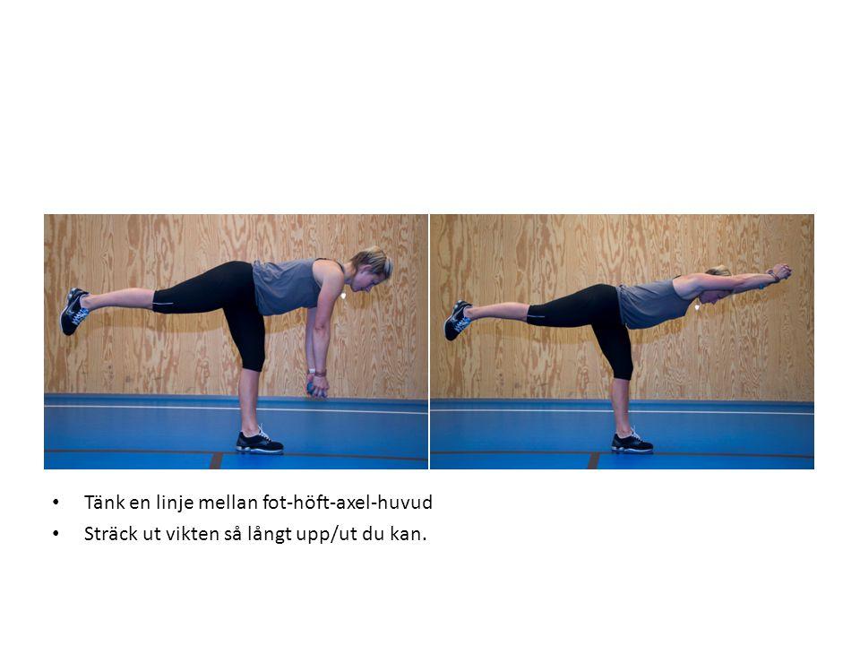 • Tänk en linje mellan fot-höft-axel-huvud • Sträck ut vikten så långt upp/ut du kan.