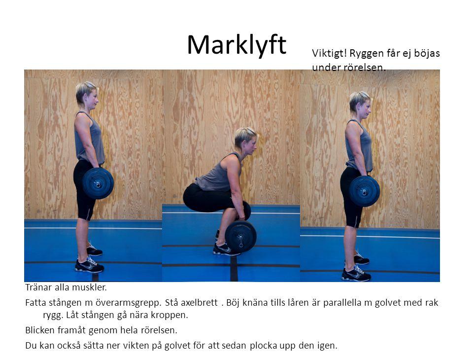 Marklyft Tränar alla muskler. Fatta stången m överarmsgrepp. Stå axelbrett. Böj knäna tills låren är parallella m golvet med rak rygg. Låt stången gå