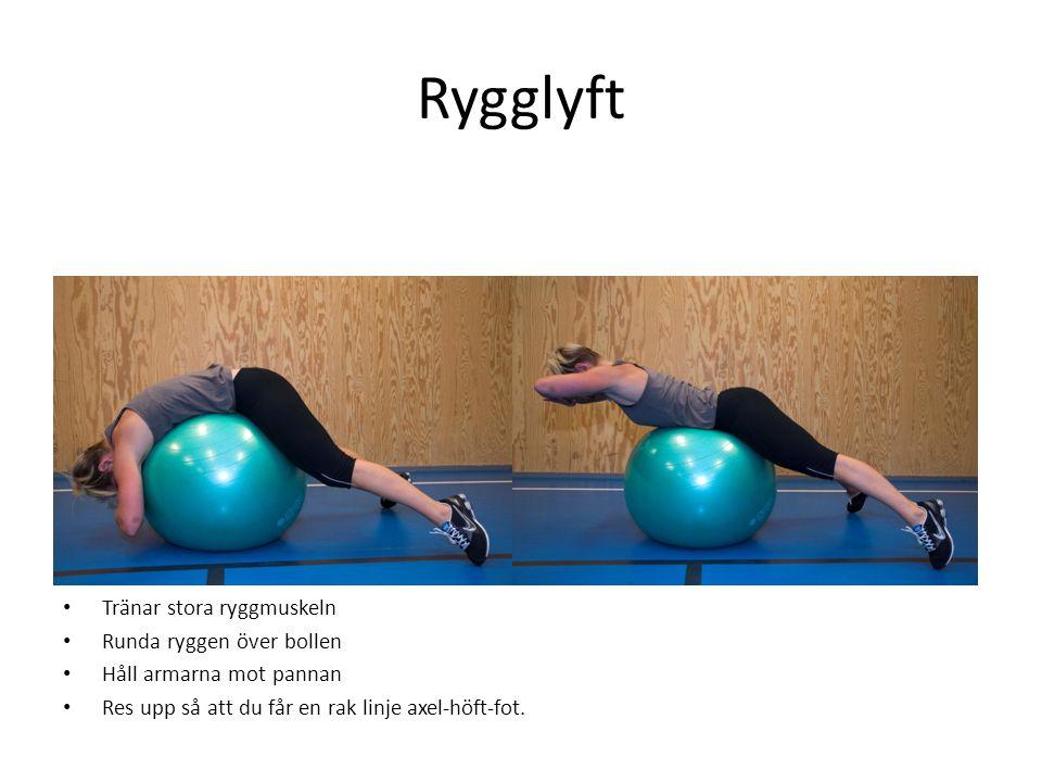 Rygglyft • Tränar stora ryggmuskeln • Runda ryggen över bollen • Håll armarna mot pannan • Res upp så att du får en rak linje axel-höft-fot.