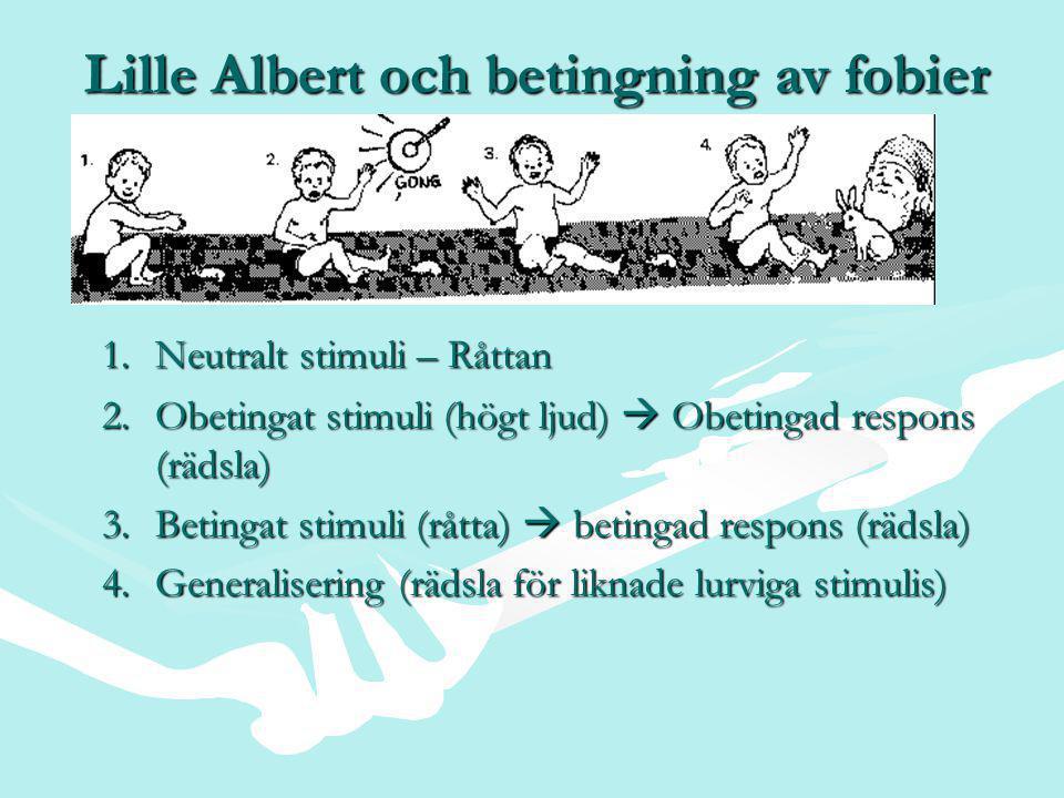 Lille Albert och betingning av fobier 1.Neutralt stimuli – Råttan 2.Obetingat stimuli (högt ljud)  Obetingad respons (rädsla) 3.Betingat stimuli (råtta)  betingad respons (rädsla) 4.Generalisering (rädsla för liknade lurviga stimulis)