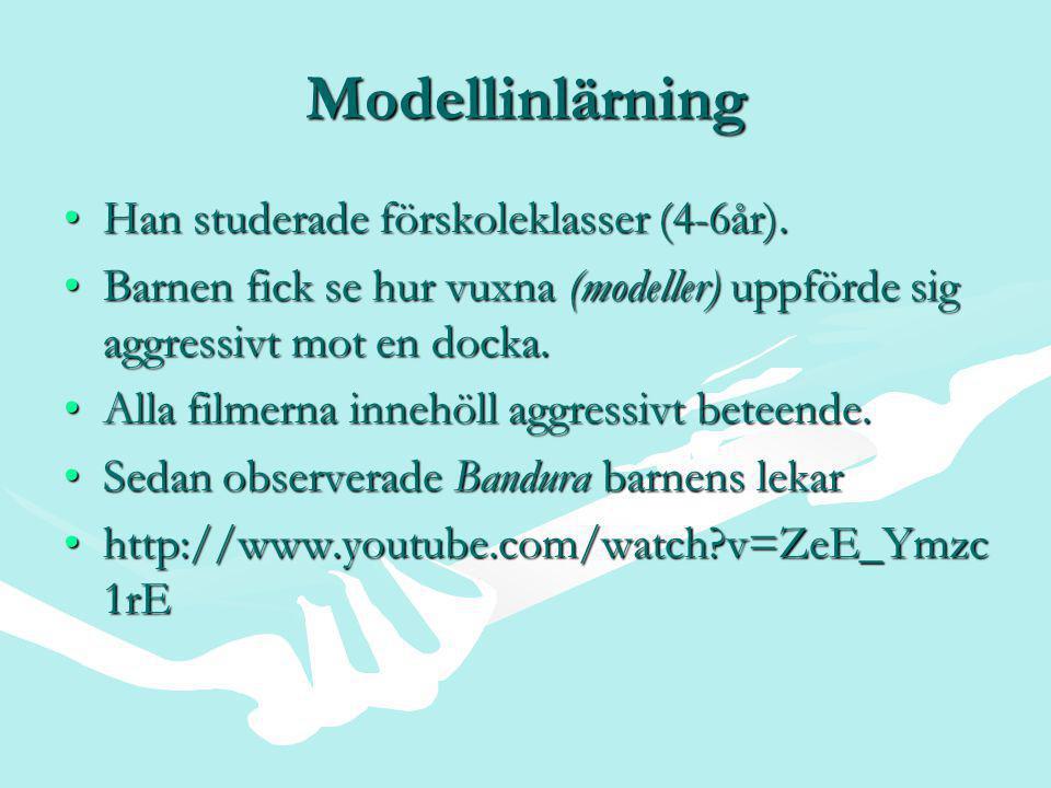 Modellinlärning •Han studerade förskoleklasser (4-6år).