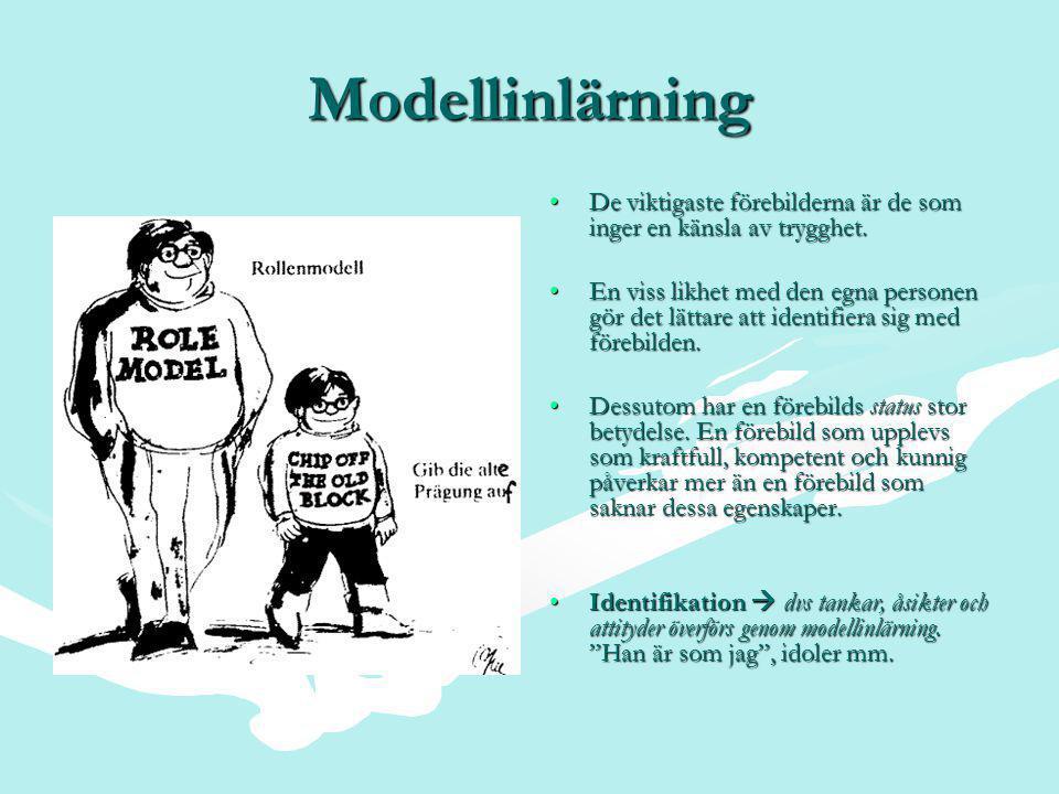 Modellinlärning •De viktigaste förebilderna är de som inger en känsla av trygghet.