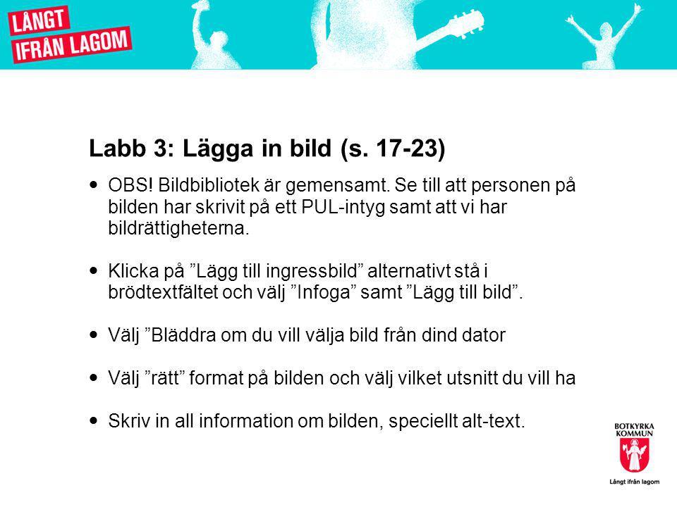 Labb 3: Lägga in bild (s.17-23)  OBS. Bildbibliotek är gemensamt.
