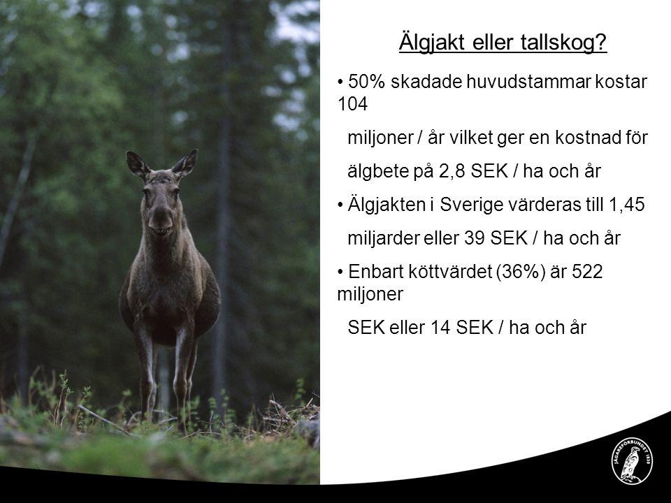 Älgjakt eller tallskog? • 50% skadade huvudstammar kostar 104 miljoner / år vilket ger en kostnad för älgbete på 2,8 SEK / ha och år • Älgjakten i Sve