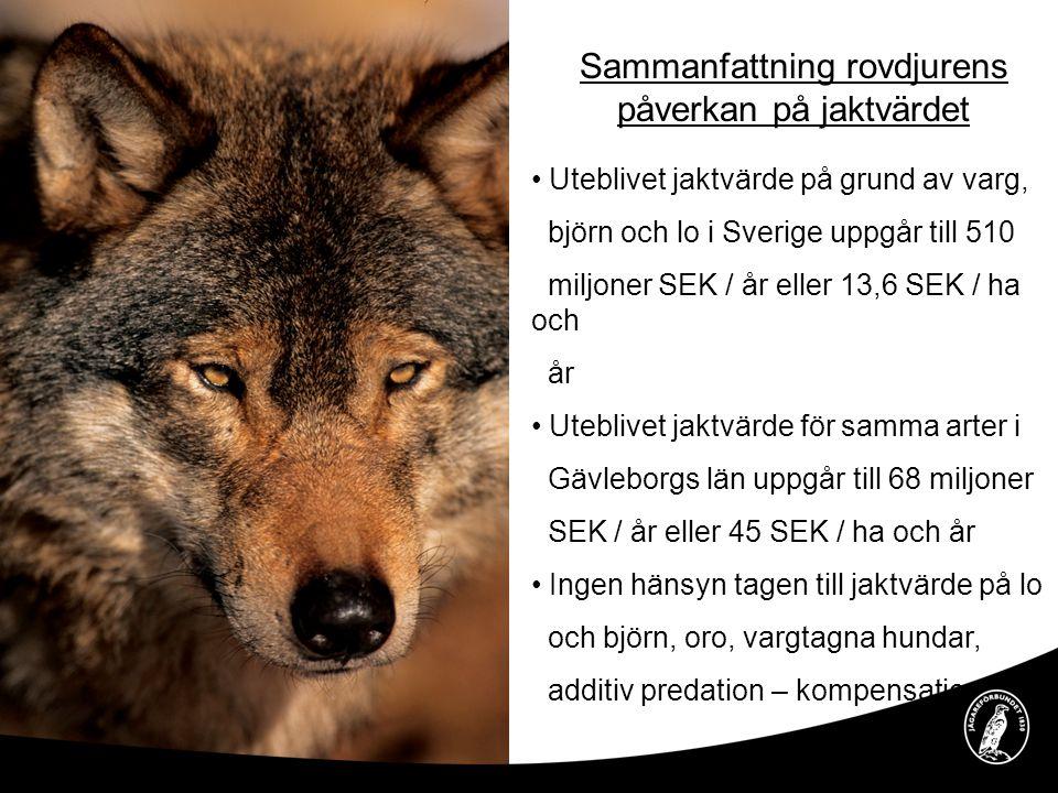 Sammanfattning rovdjurens påverkan på jaktvärdet • Uteblivet jaktvärde på grund av varg, björn och lo i Sverige uppgår till 510 miljoner SEK / år elle