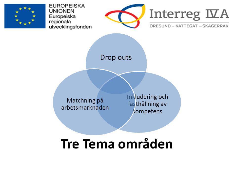 Tre Tema områden Drop outs Inkludering och fasthållning av kompetens Matchning på arbetsmarknaden
