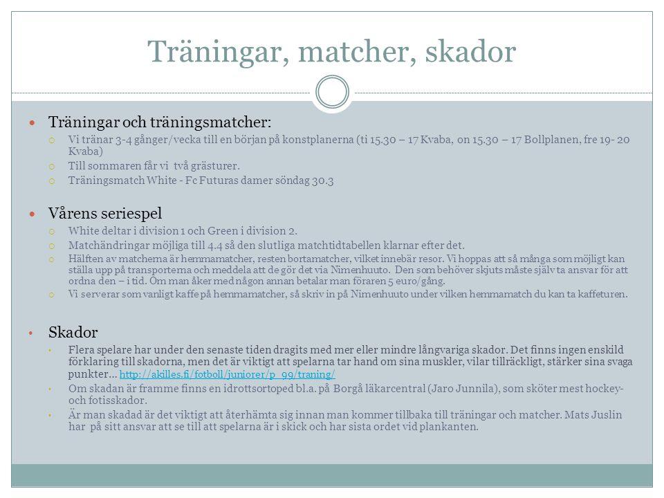 Turnerings- och lägerplan 2013 Vad?Var?När.