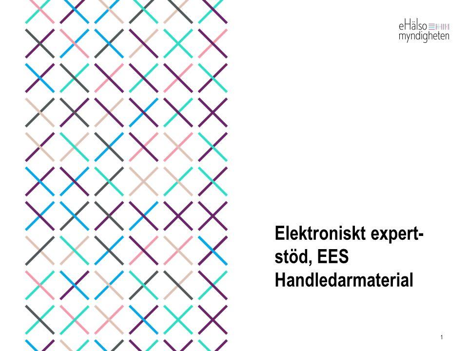 Elektroniskt expert- stöd, EES Handledarmaterial 1