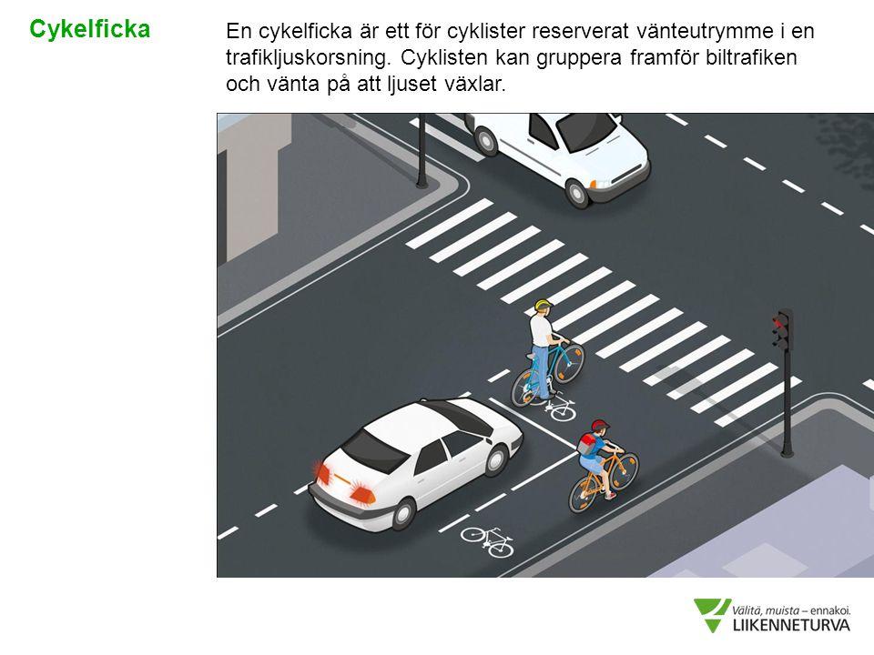 En cykelficka är ett för cyklister reserverat vänteutrymme i en trafikljuskorsning. Cyklisten kan gruppera framför biltrafiken och vänta på att ljuset