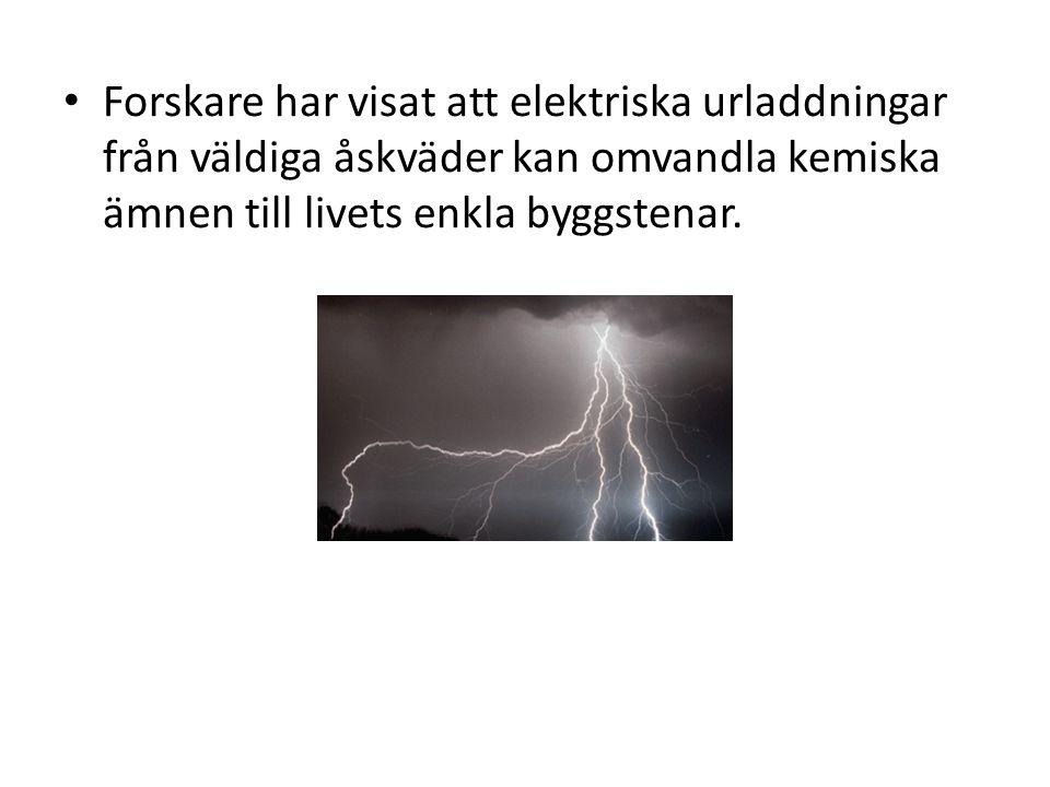 • Forskare har visat att elektriska urladdningar från väldiga åskväder kan omvandla kemiska ämnen till livets enkla byggstenar.