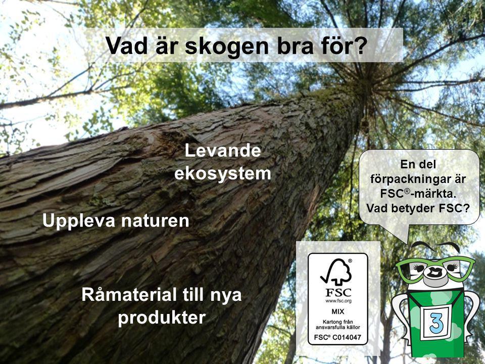 / 3 Uppleva naturen Levande ekosystem Råmaterial till nya produkter Vad är skogen bra för? En del förpackningar är FSC ® -märkta. Vad betyder FSC?