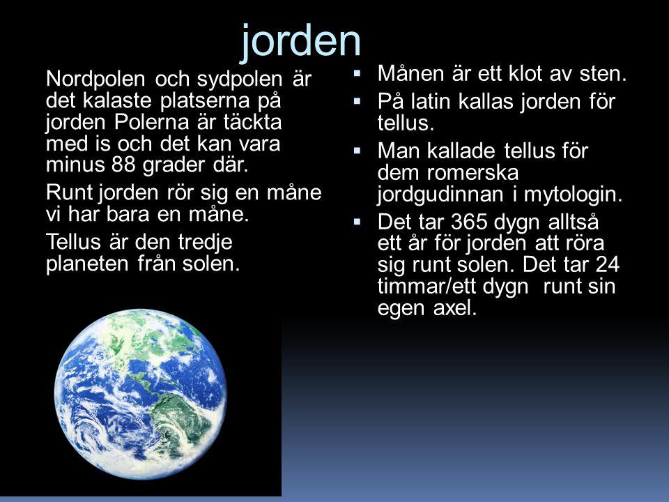 jorden Nordpolen och sydpolen är det kalaste platserna på jorden Polerna är täckta med is och det kan vara minus 88 grader där. Runt jorden rör sig en