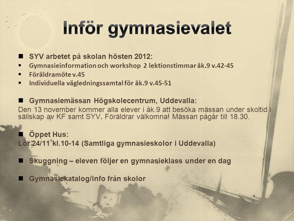  SYV arbetet på skolan hösten 2012:  Gymnasieinformation och workshop 2 lektionstimmar åk.9 v.42-45  Föräldramöte v.45  Individuella vägledningssa