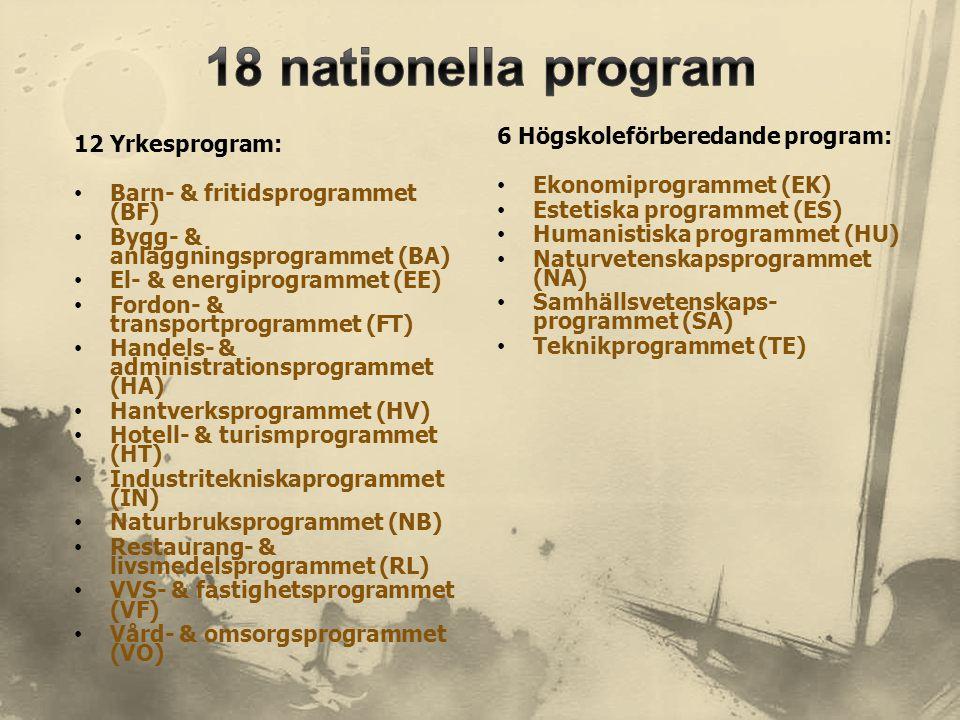 12 Yrkesprogram: • Barn- & fritidsprogrammet (BF) • Bygg- & anläggningsprogrammet (BA) • El- & energiprogrammet (EE) • Fordon- & transportprogrammet (