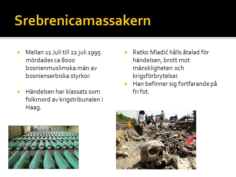  Mellan 11 Juli till 22 juli 1995 mördades ca 8000 bosnienmuslimska män av bosnienserbiska styrkor.  Händelsen har klassats som folkmord av krigstri