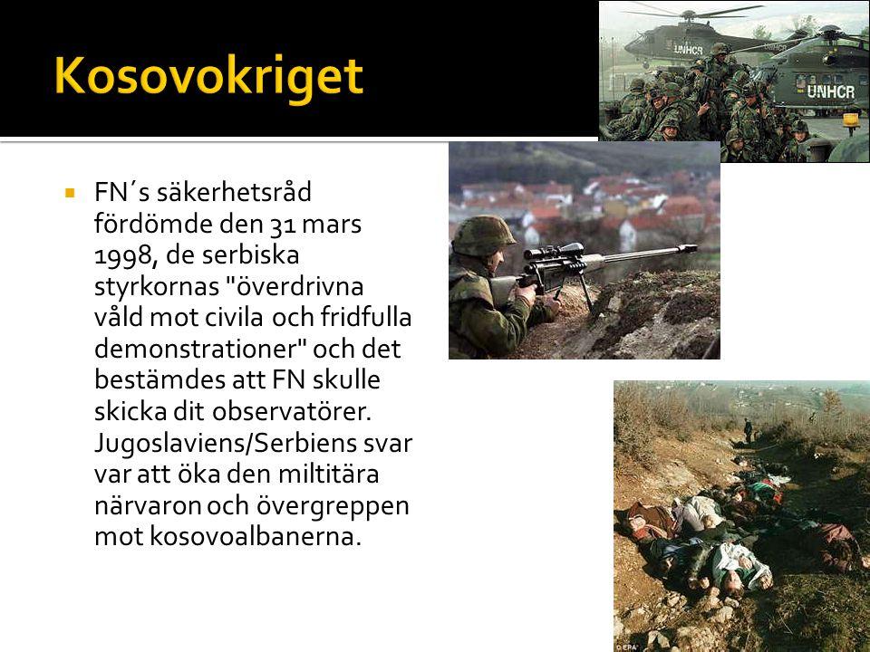  FN´s säkerhetsråd fördömde den 31 mars 1998, de serbiska styrkornas