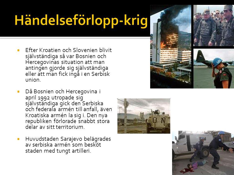  Syftet med Serbiens olika anfall var att ta landområden där en stor del serbisk befolkning fanns så att dessa områden sedan kunde införlivas i den nya Förbundsrepubliken Jugoslavien, bestående av Serbien och Montenegro (utropades 27 april 1992).