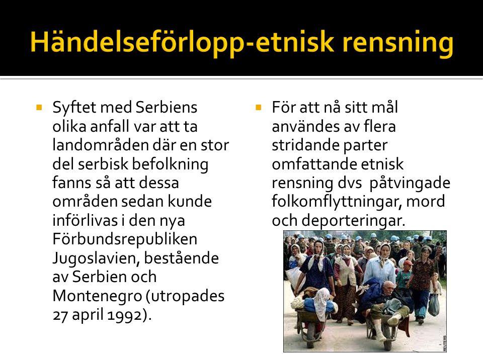  I Bosnien Hercegovina stred flera olika grupper med varandra, det blev ett utnötningskrig mellan 1992-1995 vilket slet på civilbefolkningen.