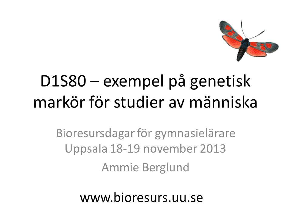 D1S80 – exempel på genetisk markör för studier av människa Bioresursdagar för gymnasielärare Uppsala 18-19 november 2013 Ammie Berglund www.bioresurs.