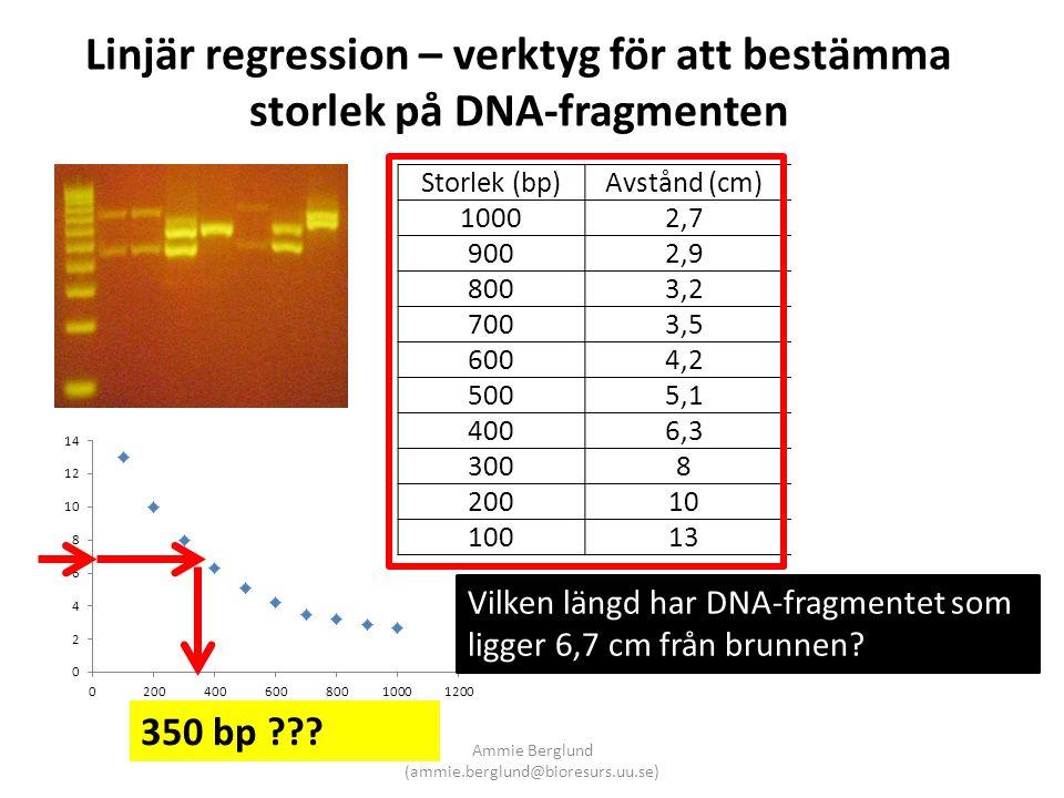 Linjär regression – verktyg för att bestämma storlek på DNA-fragmenten Storlek (bp) Avstånd (cm) log10 1000 2,7 0,431364 900 2,9 0,462398 800 3,2 0,50