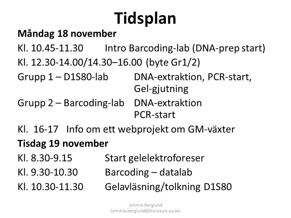 Tidsplan Måndag 18 november Kl. 10.45-11.30Intro Barcoding-lab (DNA-prep start) Kl. 12.30-14.00/14.30–16.00 (byte Gr1/2) Grupp 1 – D1S80-lab DNA-extra