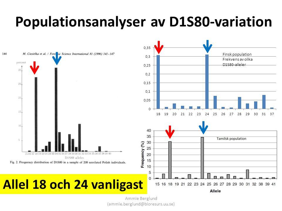 Populationsanalyser av D1S80-variation Allel 18 och 24 vanligast Ammie Berglund (ammie.berglund@bioresurs.uu.se)