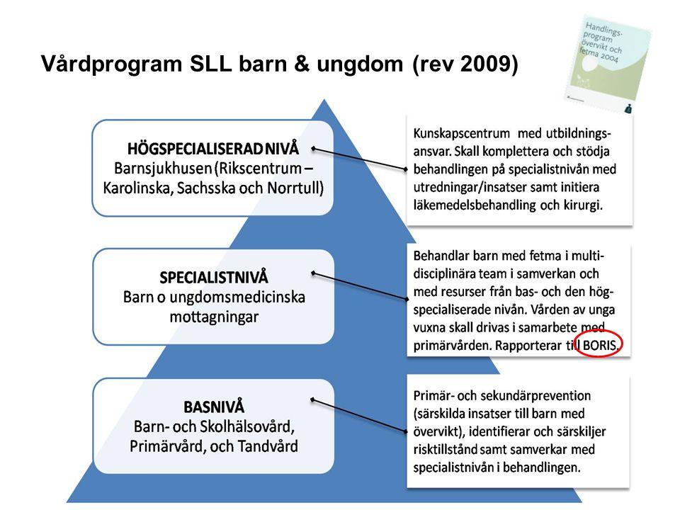 BORIS dagen 22/10 2009 SLUTSATSER  Det är första långtidsutvärderingen kring behandling av barnfetma enligt SLL's Handlingsprogram vid en enskild barnläkarmottagning  Preliminära resultat mycket lovande  Resultaten bör utvärderas närmare och jämföras med andra patientgrupper I BORIS 13