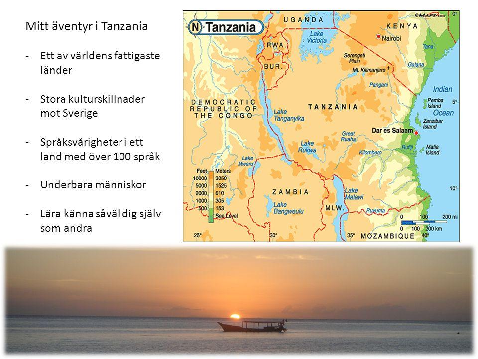 Mitt äventyr i Tanzania -Ett av världens fattigaste länder -Stora kulturskillnader mot Sverige -Språksvårigheter i ett land med över 100 språk -Underbara människor -Lära känna såväl dig själv som andra