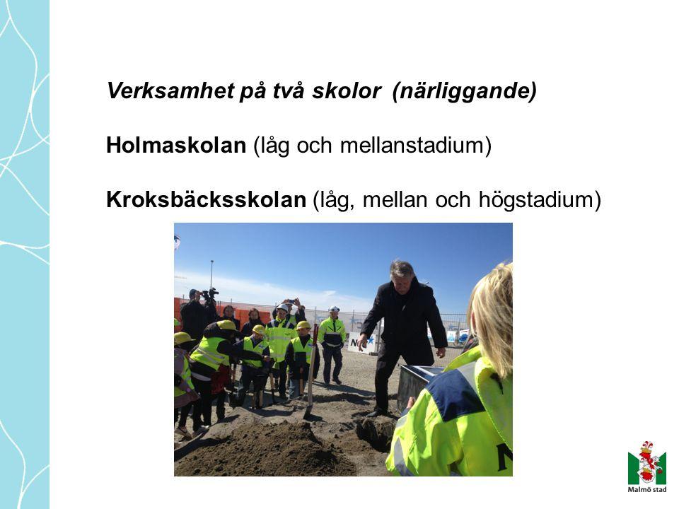 Antal barn i verksamhet Holmaskolan:50 betalande elever 60 barn i rytmik (förskoleklass) Kroksbäcksskolan:55 betalande elever 50 barn i rytmik (förskoleklass) Förskolesång 220 barn (4 och 5 år) Totalt 435 barn