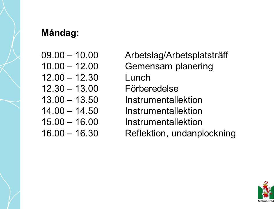 Måndag: 09.00 – 10.00Arbetslag/Arbetsplatsträff 10.00 – 12.00Gemensam planering 12.00 – 12.30Lunch 12.30 – 13.00Förberedelse 13.00 – 13.50Instrumentallektion 14.00 – 14.50Instrumentallektion 15.00 – 16.00 Instrumentallektion 16.00 – 16.30Reflektion, undanplockning