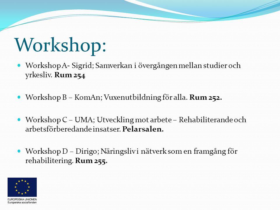 Workshop:  Workshop A- Sigrid; Samverkan i övergången mellan studier och yrkesliv.