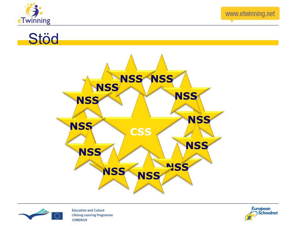 CSS NSS Stöd