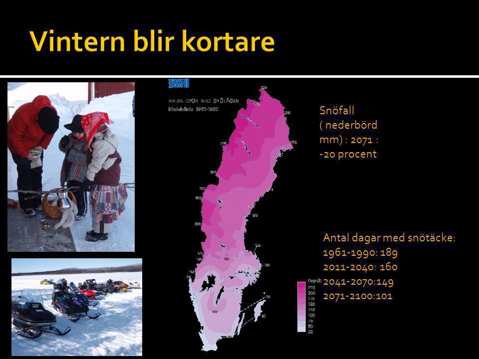 Antal dagar med snötäcke: 1961-1990: 189 2011-2040: 160 2041-2070:149 2071-2100:101 Snöfall ( nederbörd mm) : 2071 : -20 procent