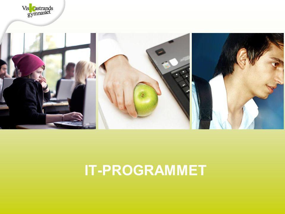 IT-PROGRAMMET