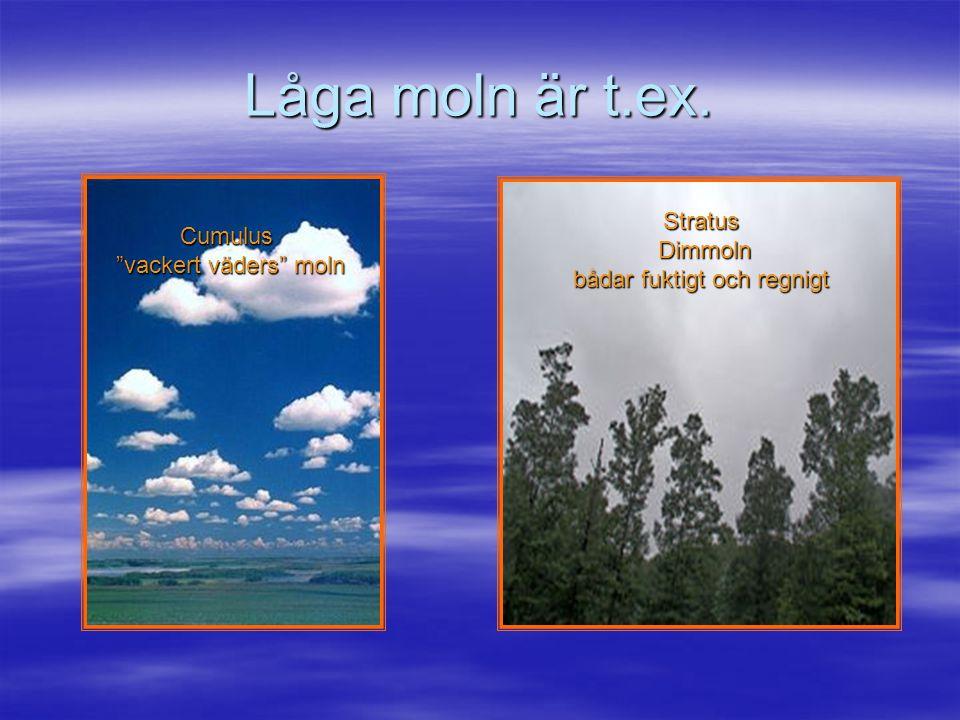 Vi börjar med att titta på några molntyper Indelningen är i huvudsak: Låga moln Medelhöga moln Höga moln