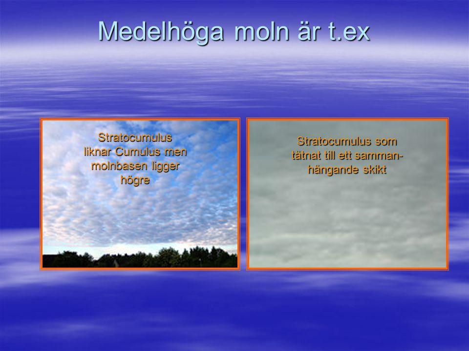 """Låga moln är t.ex. Cumulus """"vackert väders"""" moln Stratus Dimmoln bådar fuktigt och regnigt"""