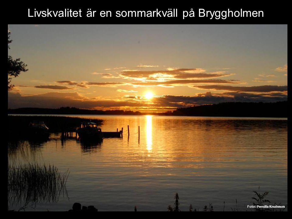 Livskvalitet är en sommarkväll på Bryggholmen Foto: Pernilla Knutsson