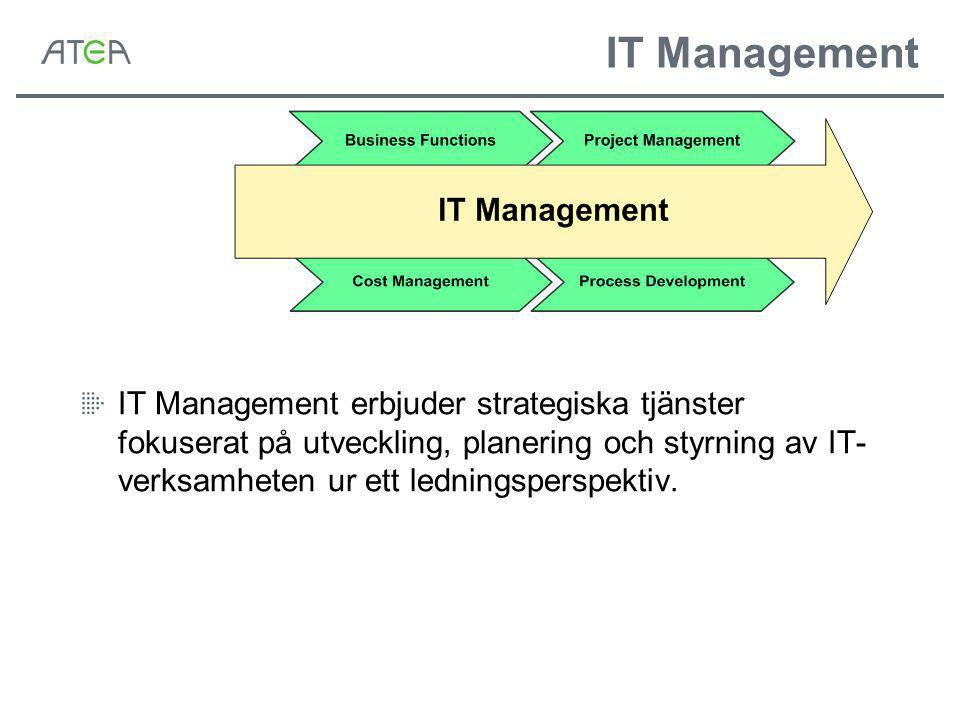 IT Management IT Management erbjuder strategiska tjänster fokuserat på utveckling, planering och styrning av IT- verksamheten ur ett ledningsperspektiv.